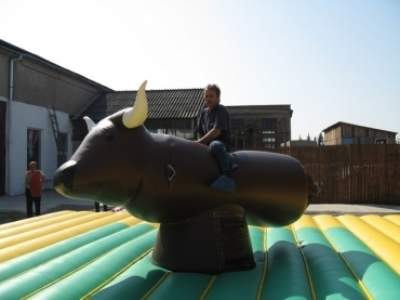 Oppblasbare spill bungee bull ldf 1945 4