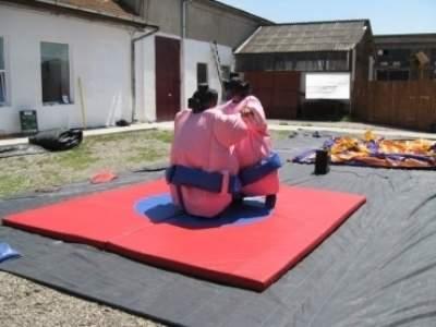 Oppblasbare spill sumo bryting voksen ldf570 2