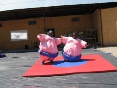 Oppblasbare spill sumo bryting voksen ldf570 4